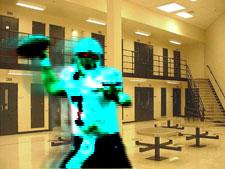 Michael Vick jail
