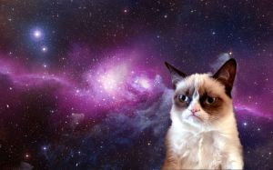 Grumpy-Cat-in-Space