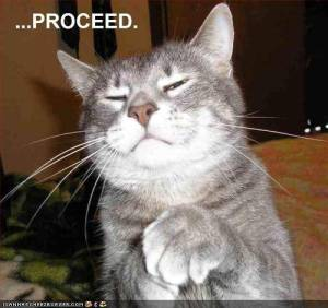 proceed-cat
