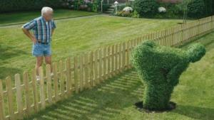 asshole-neighbor